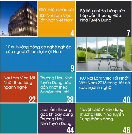 Báo cáo 100 nơi làm việc tốt nhất Việt Nam Anphabe