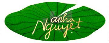 logo AnhNguyet